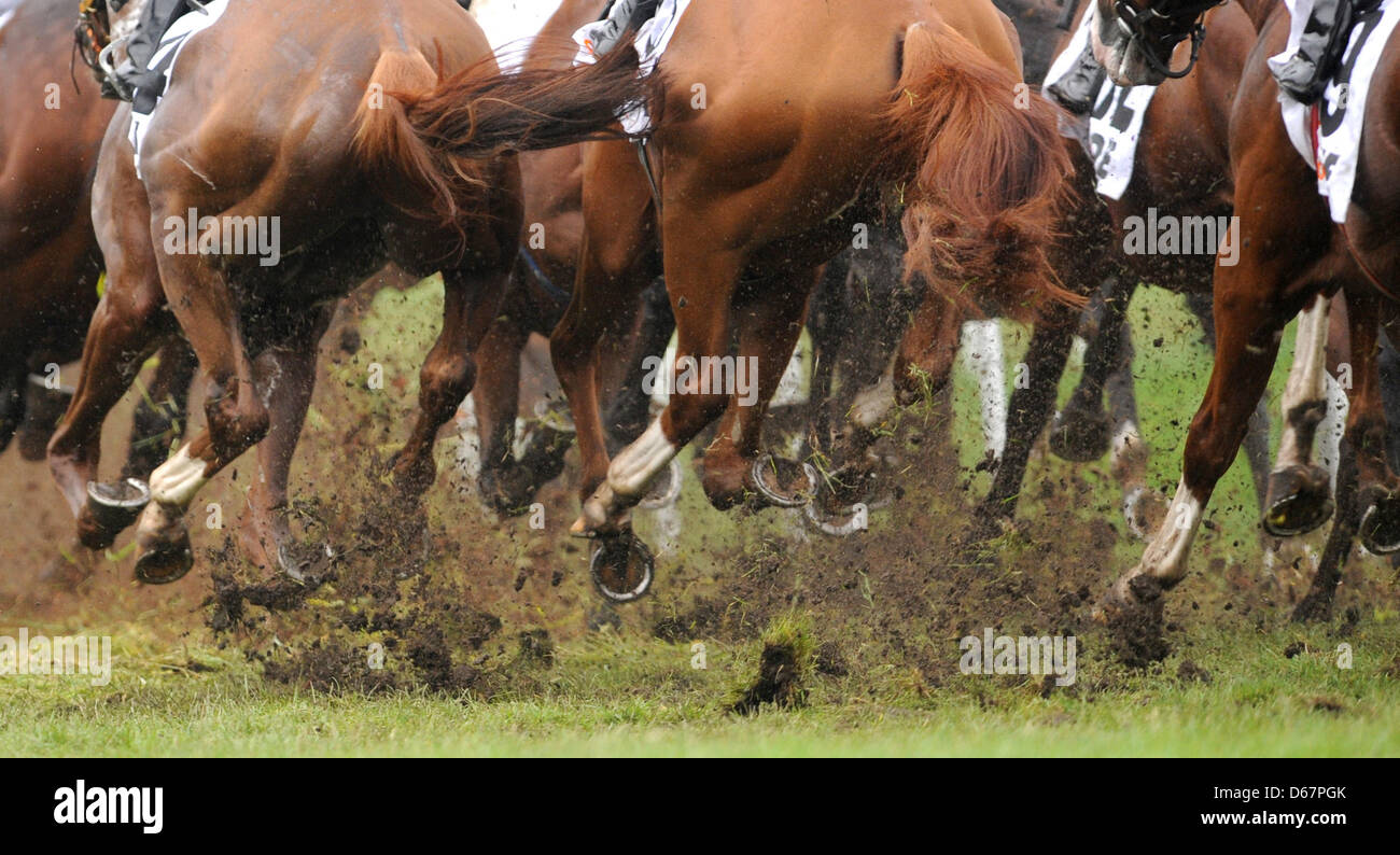 FILE - An archive picture dated 03 July 2011 shows the start of the 142nd German Gallop Derby in Hamburg-Horn, Germany. - Stock Image