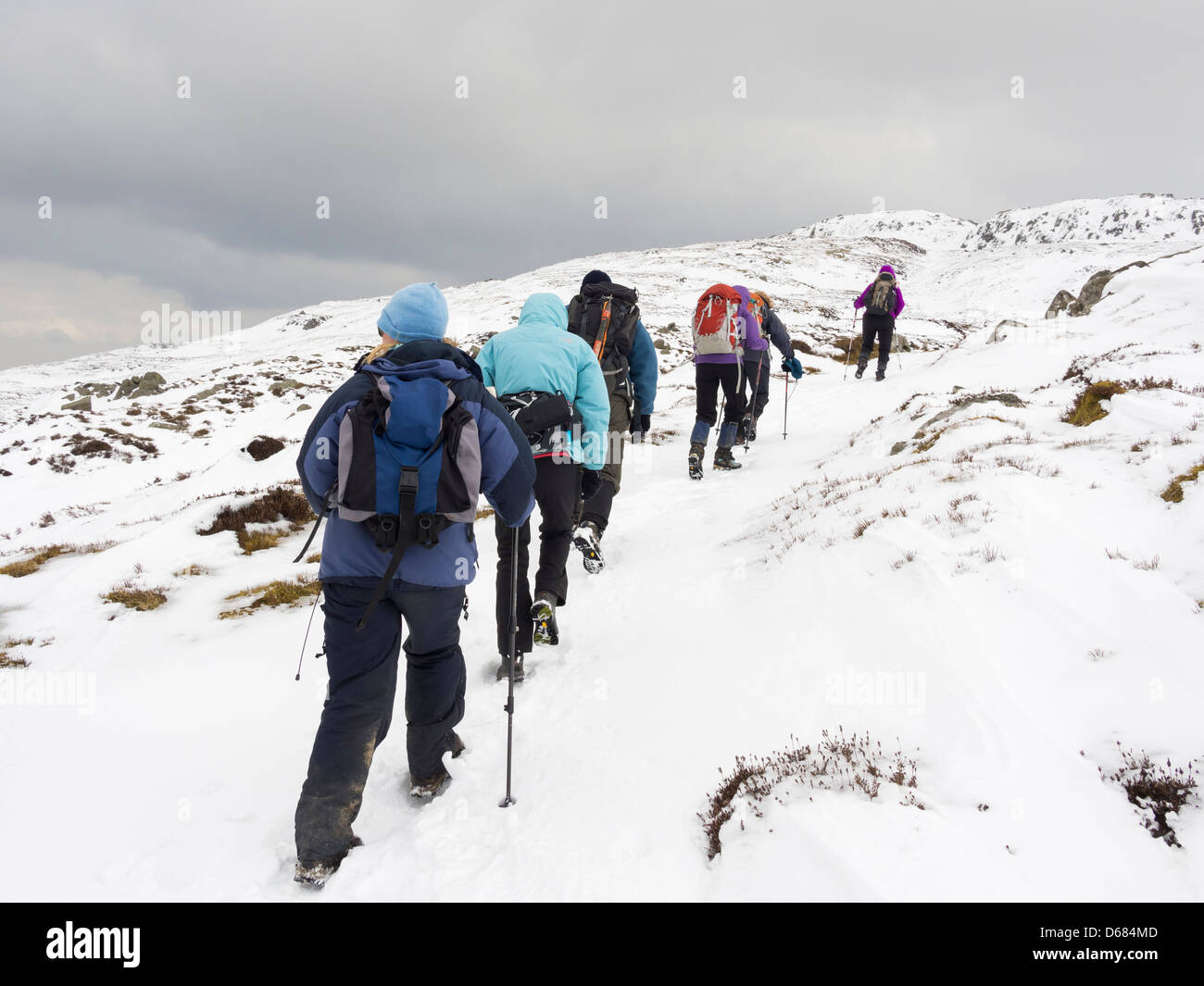Group of Ramblers in a line hiking up Tal-y-Fan mountain in deep snow in mountains of Snowdonia, North Wales, UK, - Stock Image