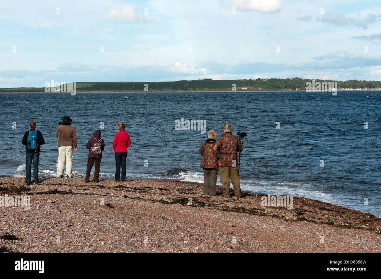 Wildlife watchers at Chanonry Point in Scotland. - Stock Image