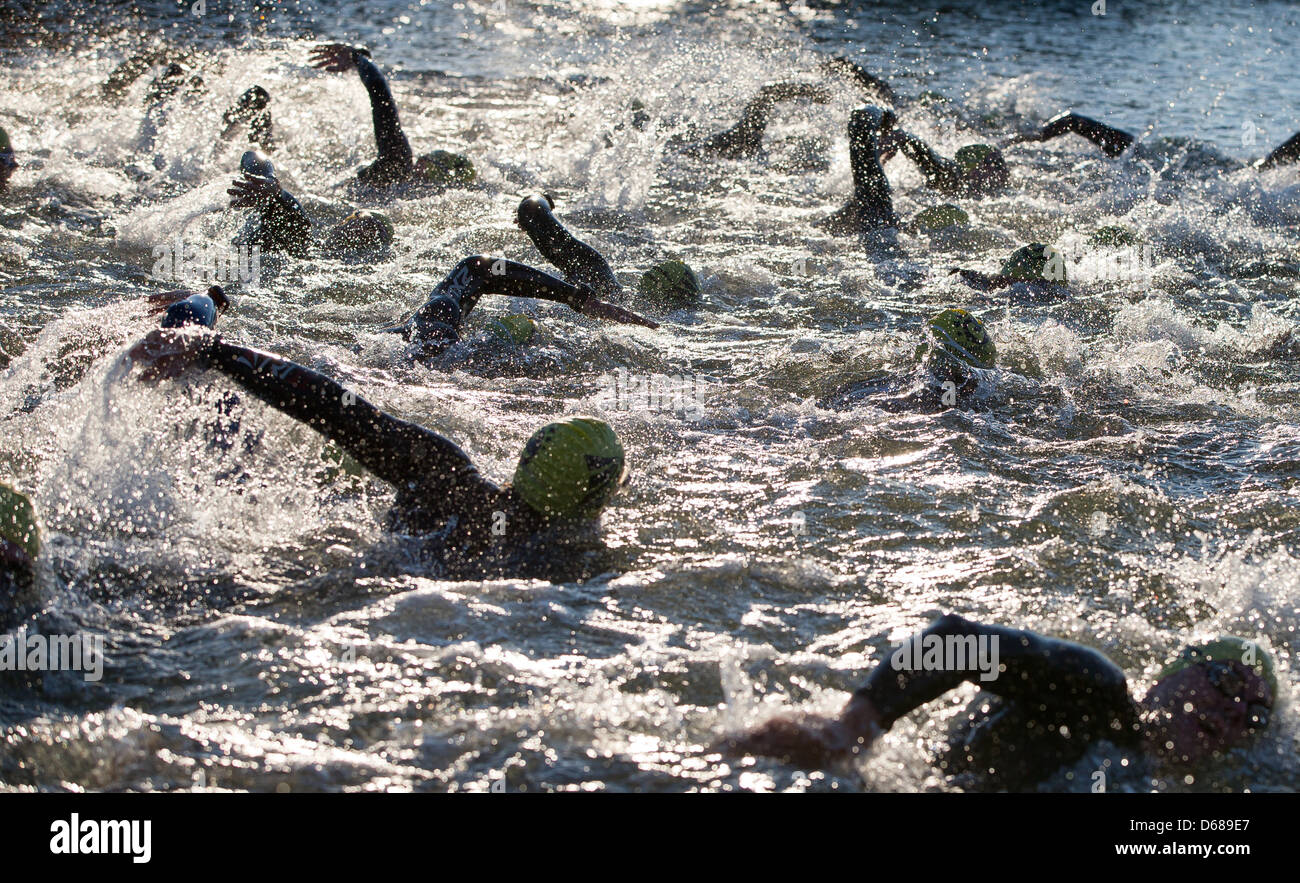 Triathletes start swimming during the Triathlon Challenge Roth in Hilpoltstein, Germany, 08 July 2012. - Stock Image