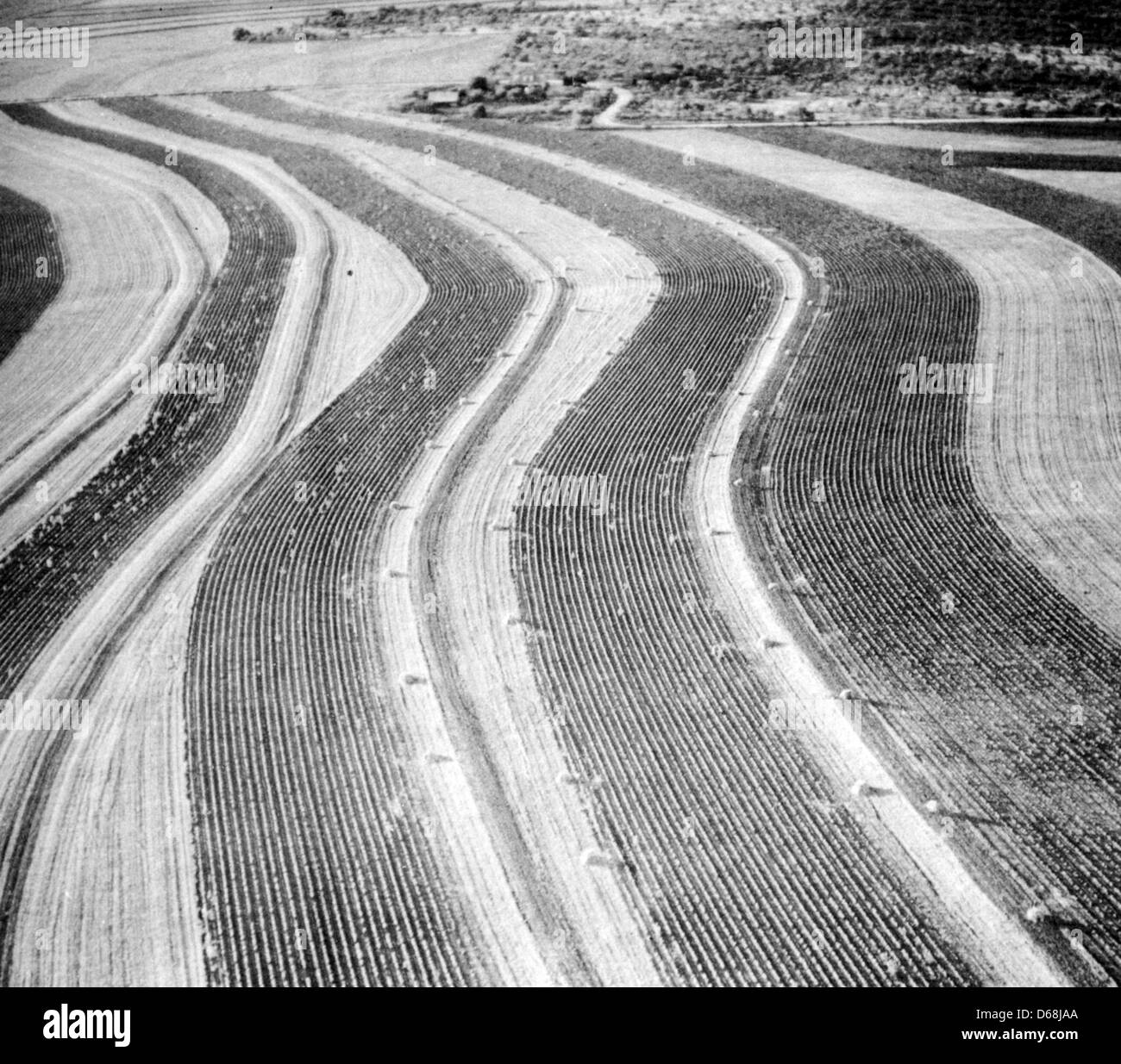 CONTOUR PLOUGHING in Brown County, Texas, about 1938 as advocated by the US Soil Conservation Service - Stock Image