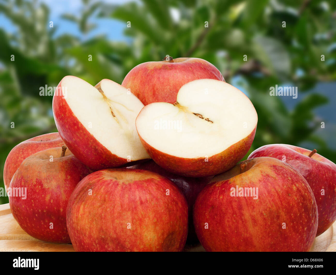 little apple ugly but good - Stock Image