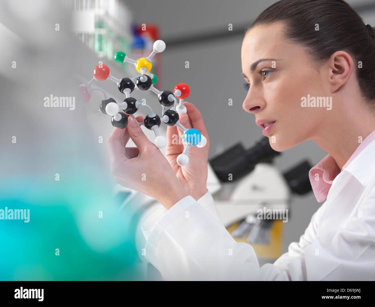 Scientist examining molecular model - Stock Image