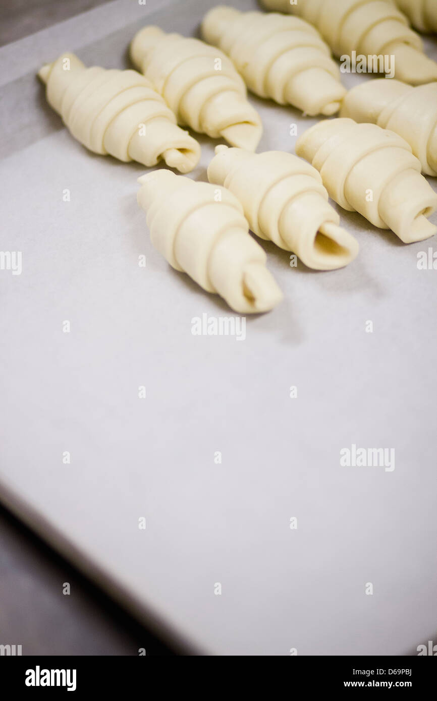 Rolled dough on cookie sheet - Stock Image