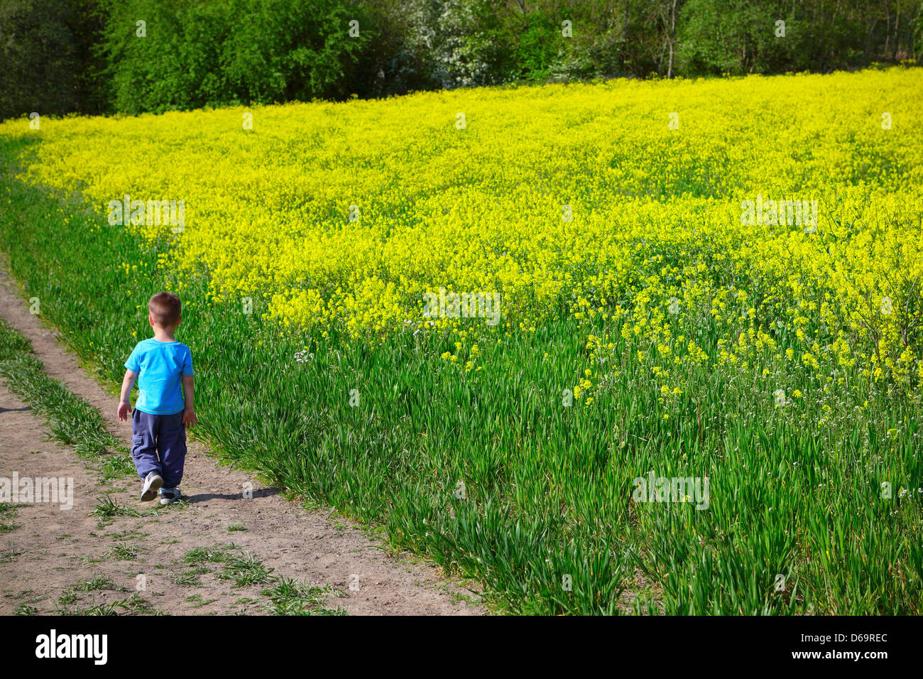 In the midst of nature - Stock Image