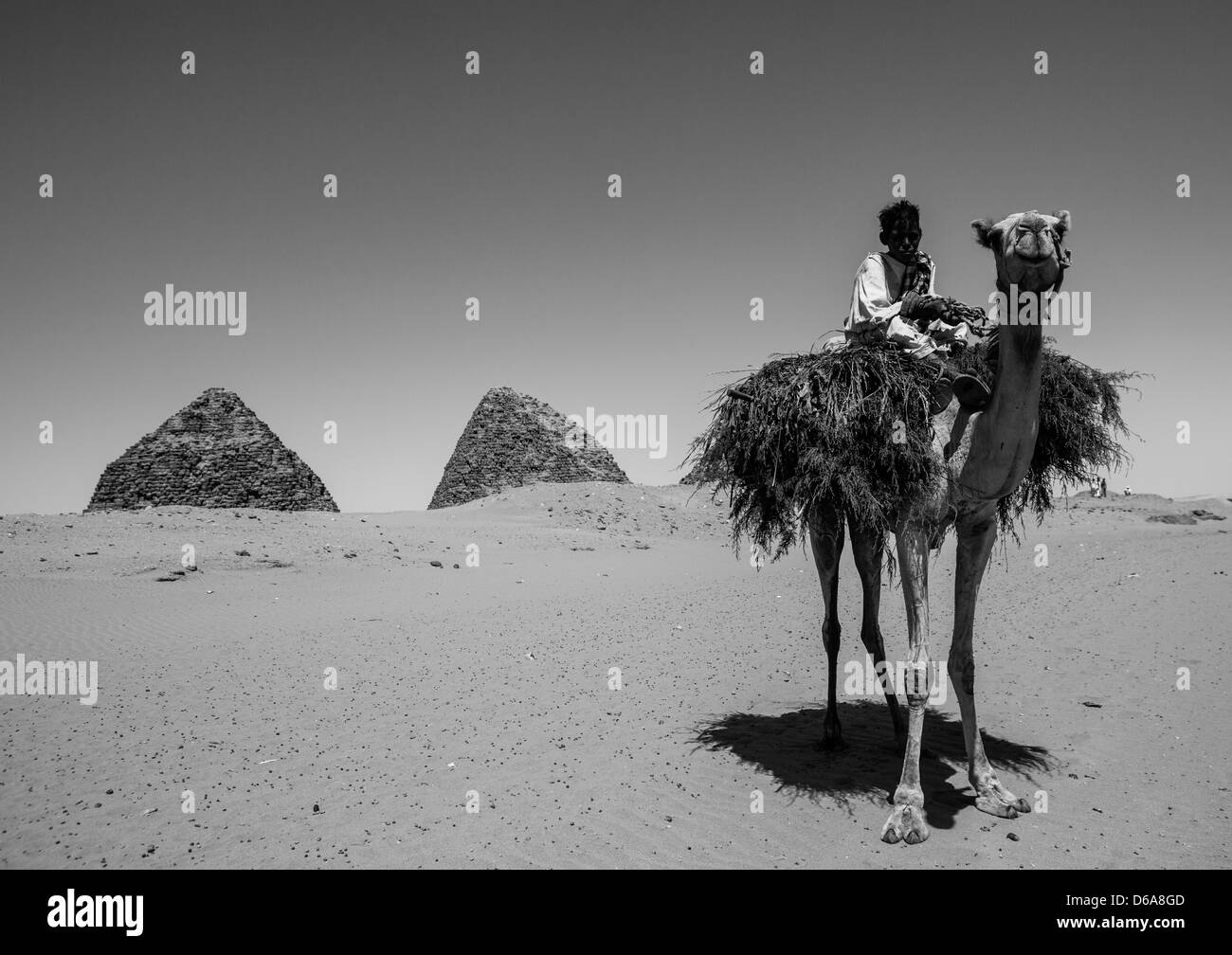 Kids On A Camel In Front Of The Royal Pyramids Of Napata, Nuri, Sudan Stock Photo