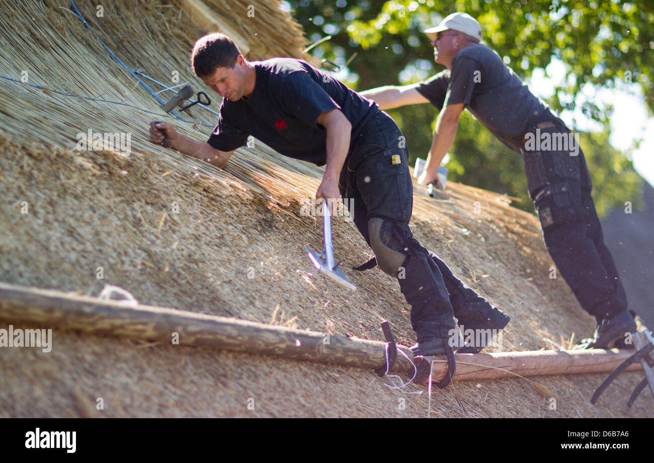 Thatchers Udo Schoenrock (R) and Mathias Hahn tools install a thatched roof on an old farmhouse in Hoben near Wismar, - Stock Image