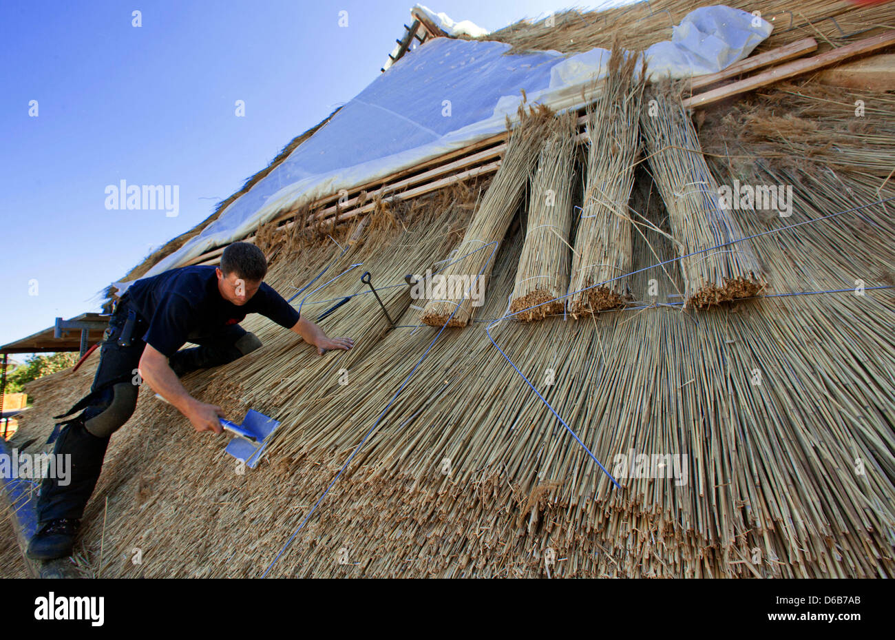 Thatcher Mathias Hahn works on a thatched roof on an old farmhouse in Hoben near Wismar, Germany, 13 August 2012. - Stock Image
