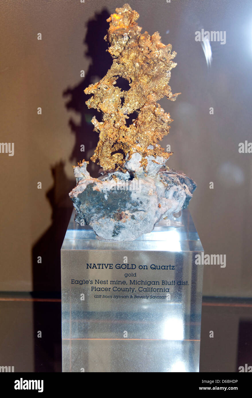 Gold, Natural History Museum, Los Angeles, CA - Stock Image