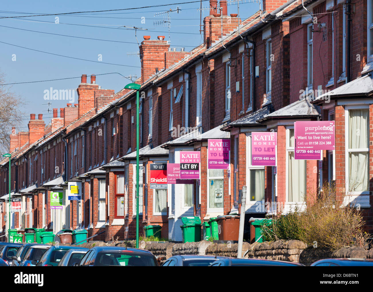 For sale and for rent signs in a residential area mainly for the student population of Nottingham and trent University - Stock Image