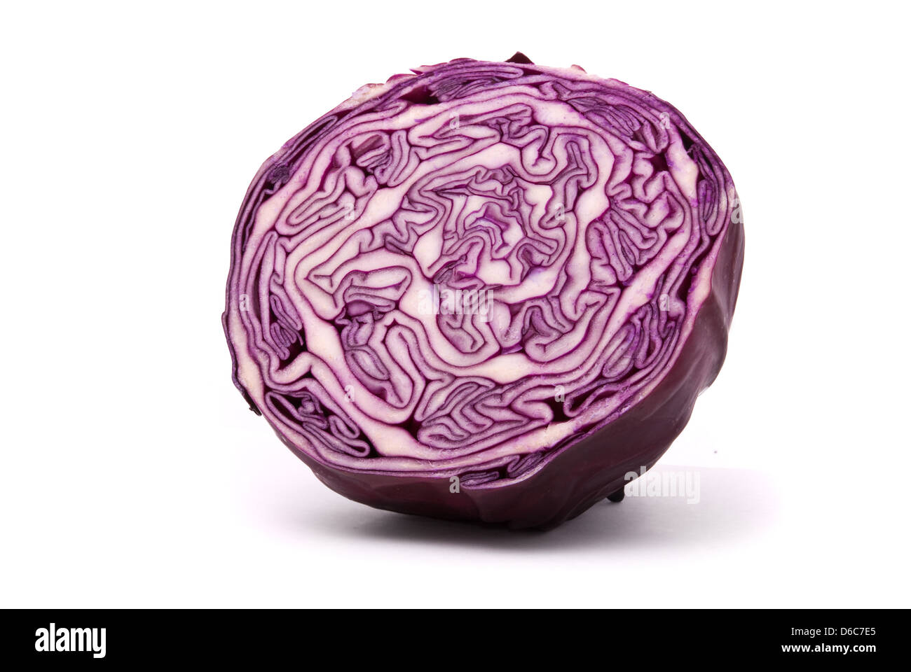 Red cabbage on a white background - Stock Image
