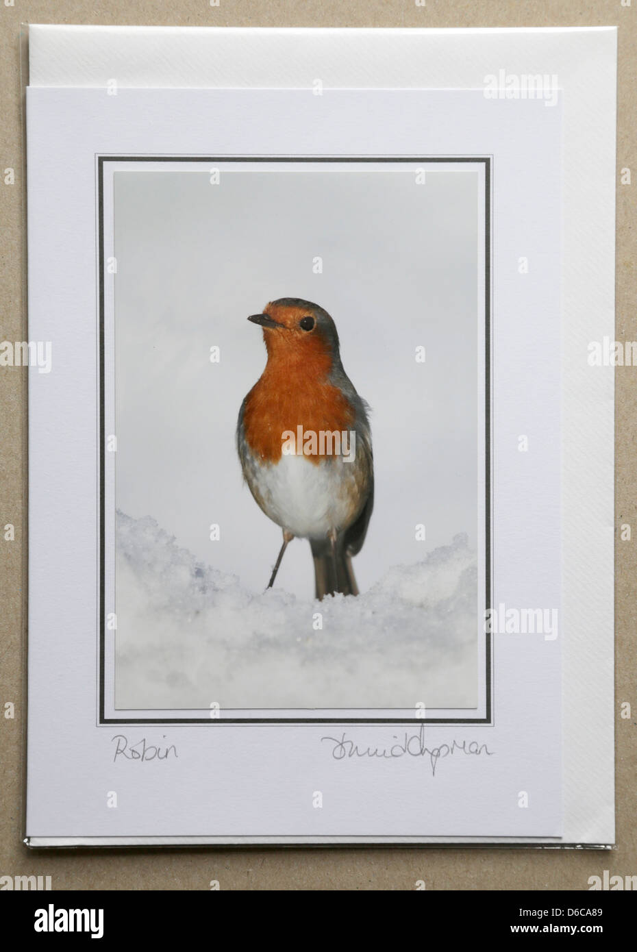 Greetings Card with Robin Picture; by David Chapman Stock Photo