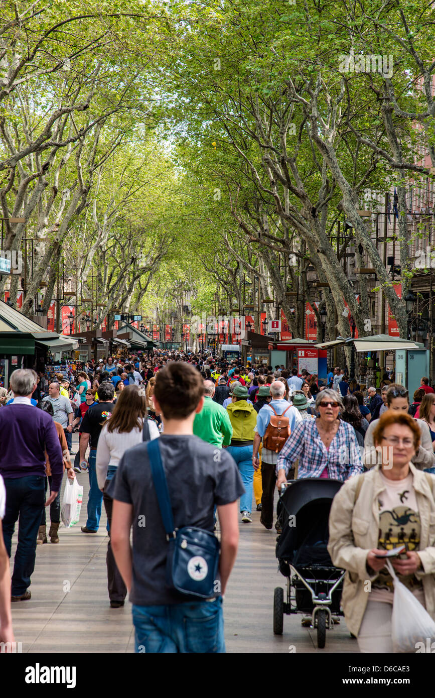 La Rambla street, Barcelona, Catalonia, Spain - Stock Image