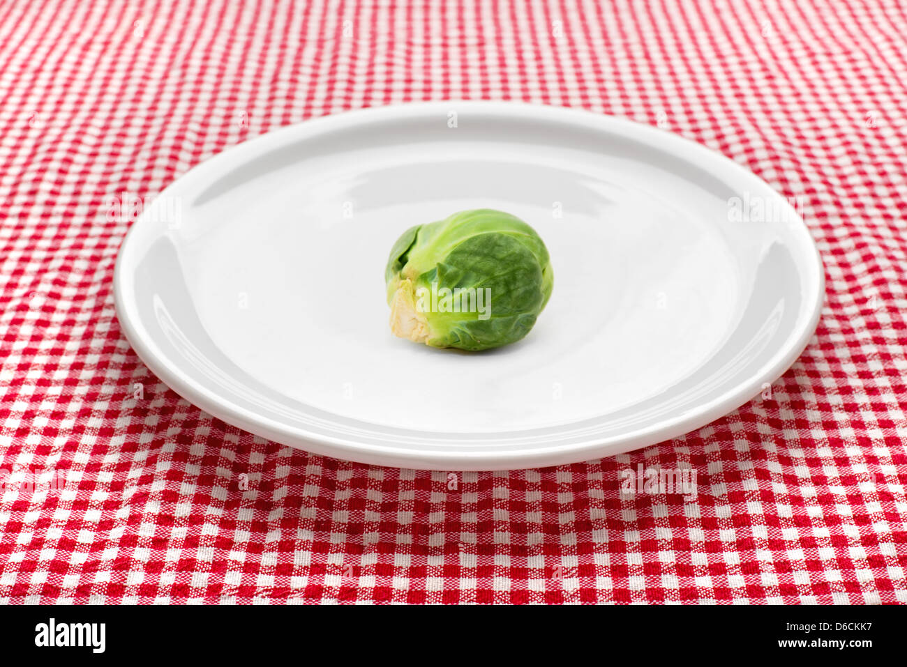 Raw brussels sprouts on white plate on kitchen table, red and white checkered tablecloth in background. - Stock Image