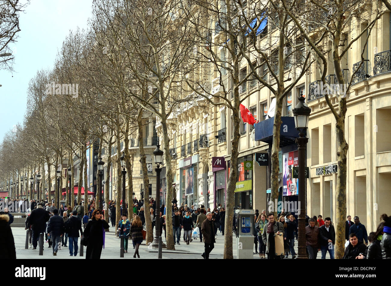 Why is the Champs Elysees in Paris so called