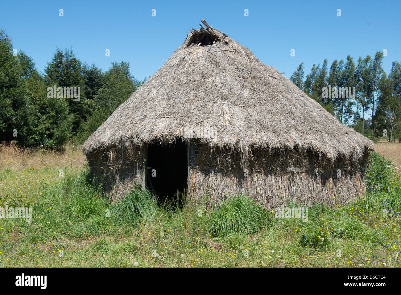 Traditional Mapuche Thatched hut in Temuco, Chile  - Stock Image