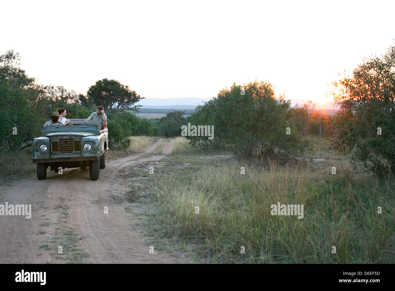 Jeep driving down a trail at sunset in a Serengetti landscape - Stock Image