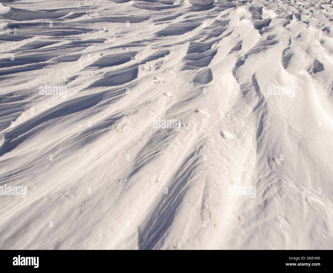 Sastrugi caused by wind scour on snow, Lake District, UK. - Stock Image
