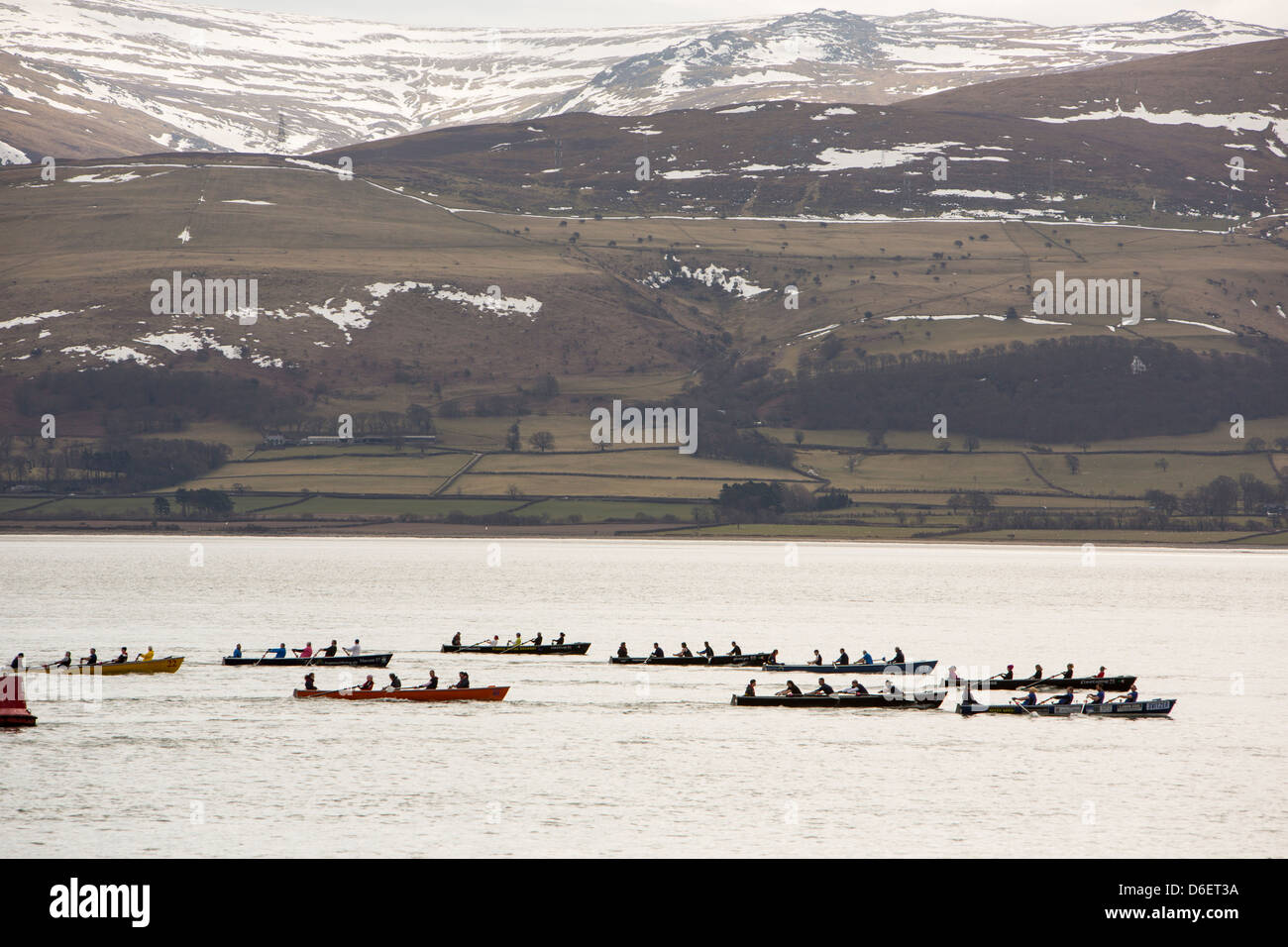 The Annual Castle to Castle boat race which goes from Beaumaris Castle to Caernafon Castle, along the Menai Straights, - Stock Image