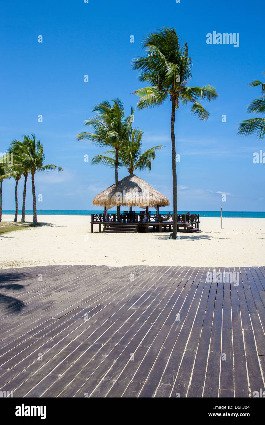 Beach hut board walk and palm trees by the south china sea at Rasa Ria Sabah Borneo malayia sand blue sky sun sunshine - Stock Image