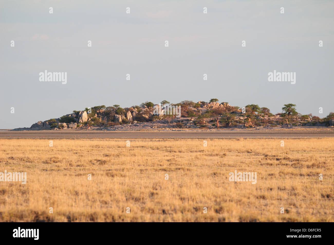 View on Kubu Island, Sua salt pan, Botswana - Stock Image