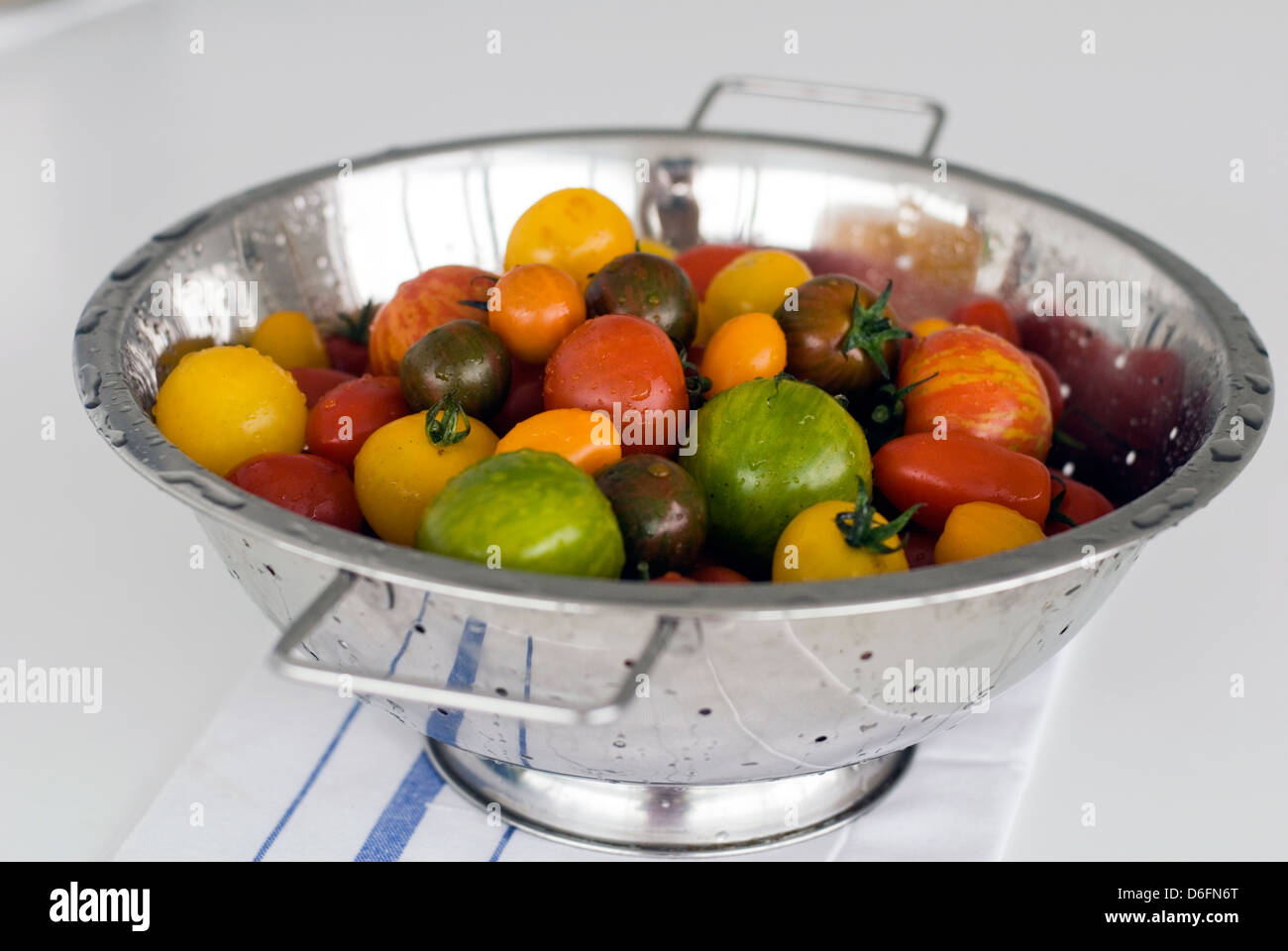 Tomato mixed varieties / red,green,yellow, - Stock Image