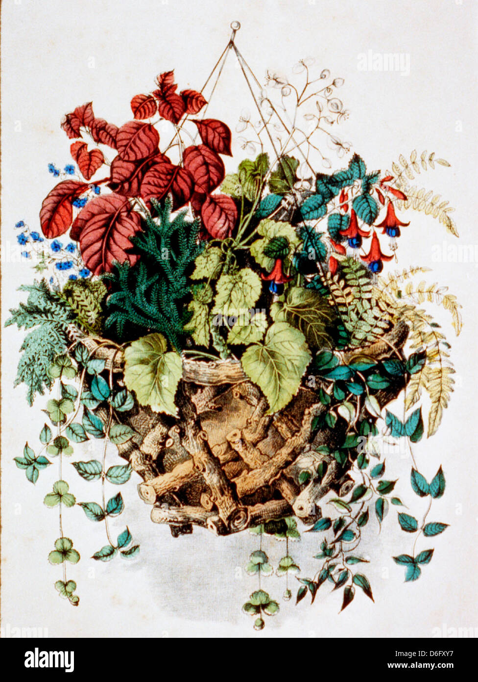 Rustic basket - hand colored lithograph, circa 1870 - Stock Image