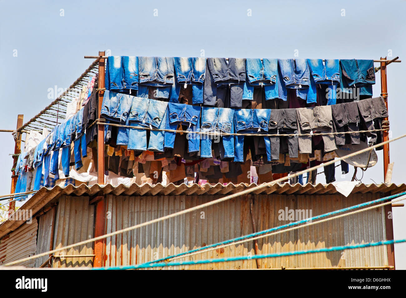 Denim Jeans washed and hanging out to dry in the mid day sun at a commercial washing factory. Location of shot Bombay - Stock Image