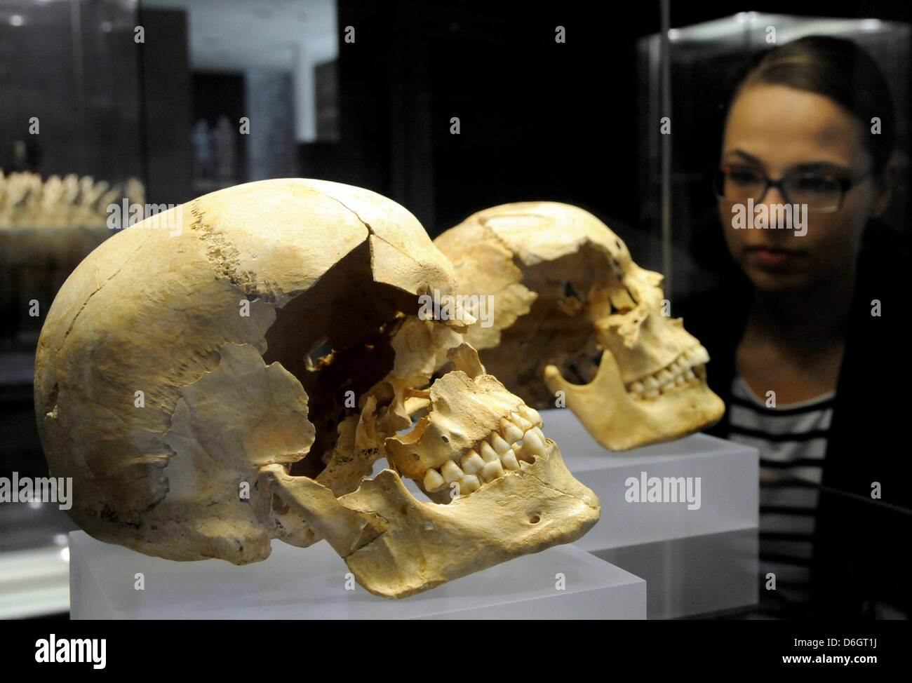 (dpa FILE) - An archive picture, dated 4 July 2011, shows the curator Romina Schiavone as she examines two ancient - Stock Image