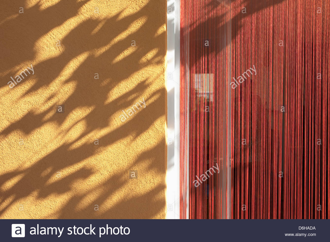 Rough cast wall shadow leaves sunlight doorway - Stock Image