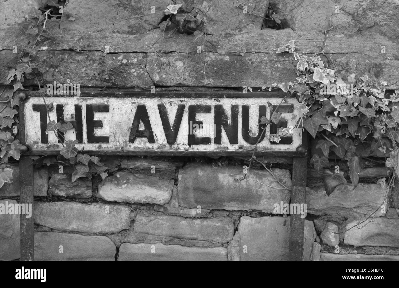 The Avenue road name sign - Stock Image