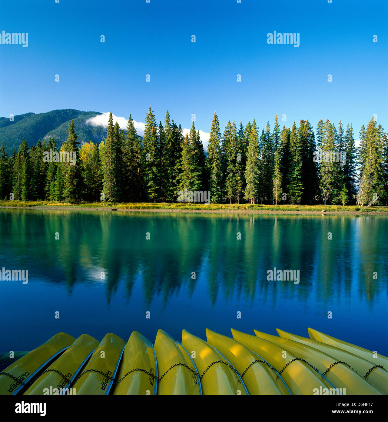 Yellow canoes mirror the reflections of evergreen trees in the Bow River, Banff National Park, Alberta, Canada - Stock Image