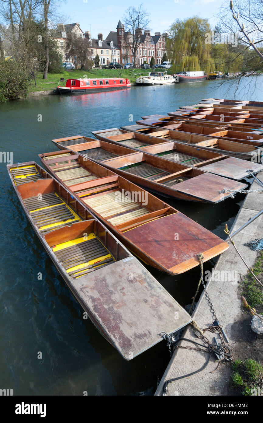 Punts moored on the River Cam at Jesus Green Cambridge UK opposite Chesterton Road. - Stock Image