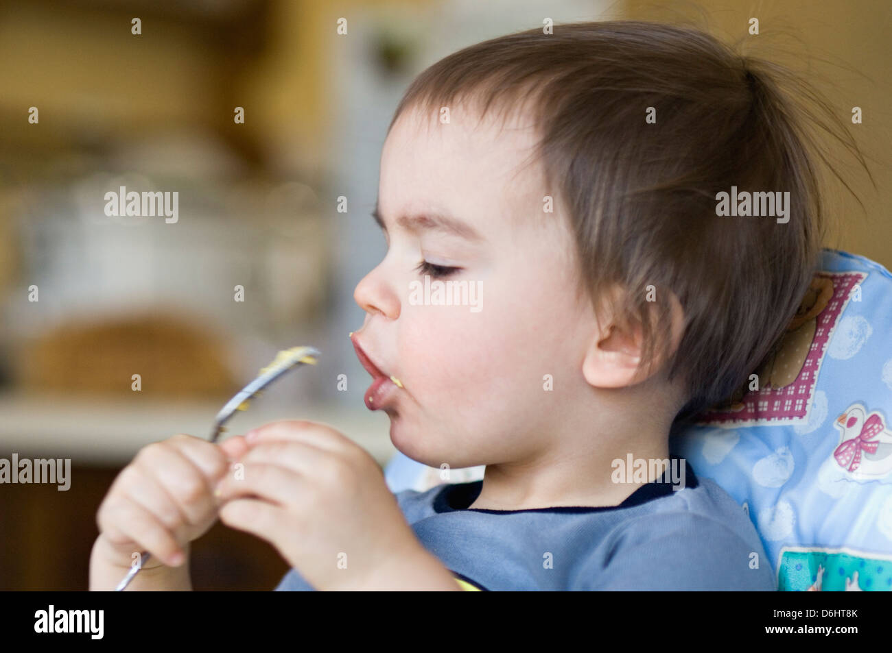 Twenty Two Month Old Boy Eating Scrambled Eggs with a Fork - Stock Image