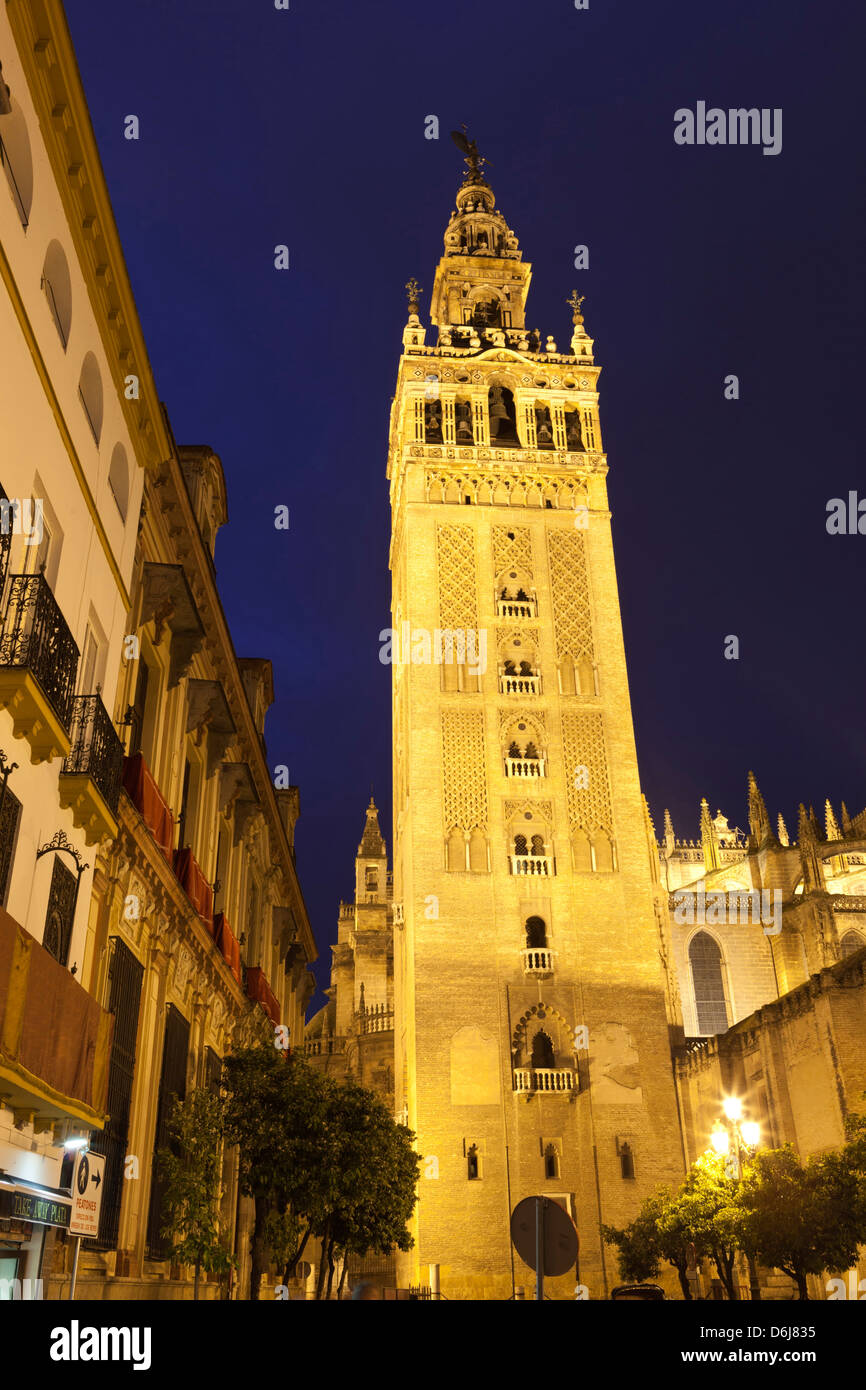 The Giralda at night, UNESCO World Heritage Site, Seville, Andalucia, Spain, Europe - Stock Image