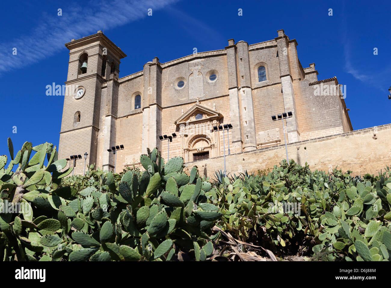 La Colegiata, the 16th century Renaissance church, Osuna, Andalucia, Spain, Europe - Stock Image