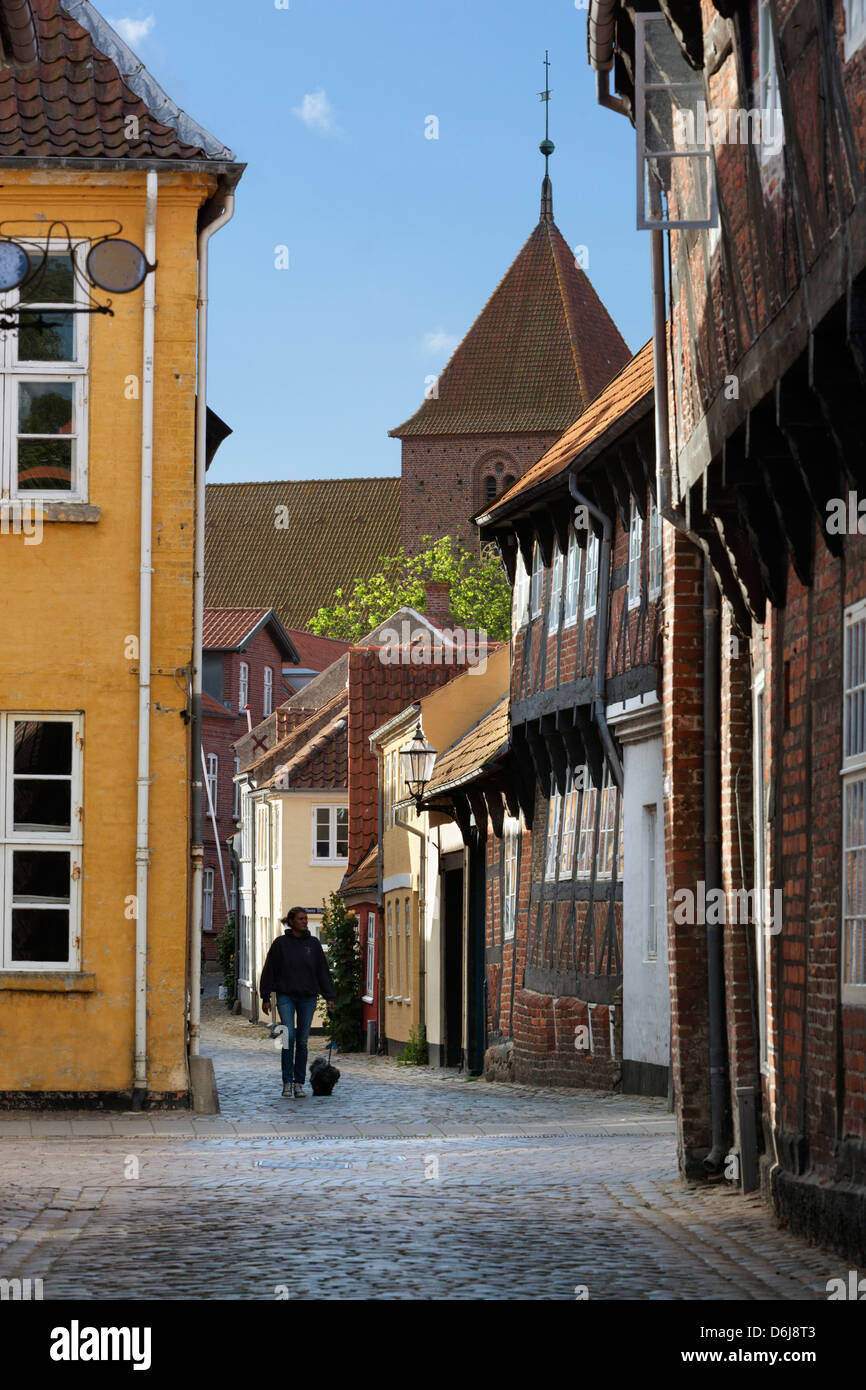 Cobblestone alley in the old town with tower of St. Catharinae Kirke, Ribe, Jutland, Denmark, Scandinavia, Europe - Stock Image