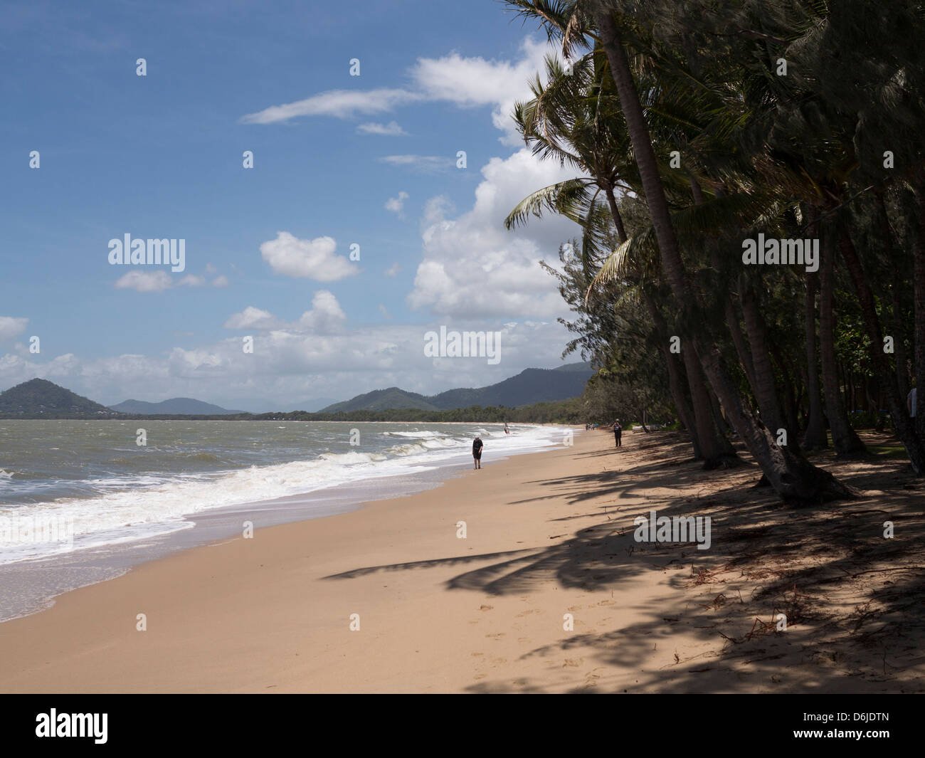 Beach at Palm Cove, Cairns, North Queensland, Australia, Pacific Stock Photo