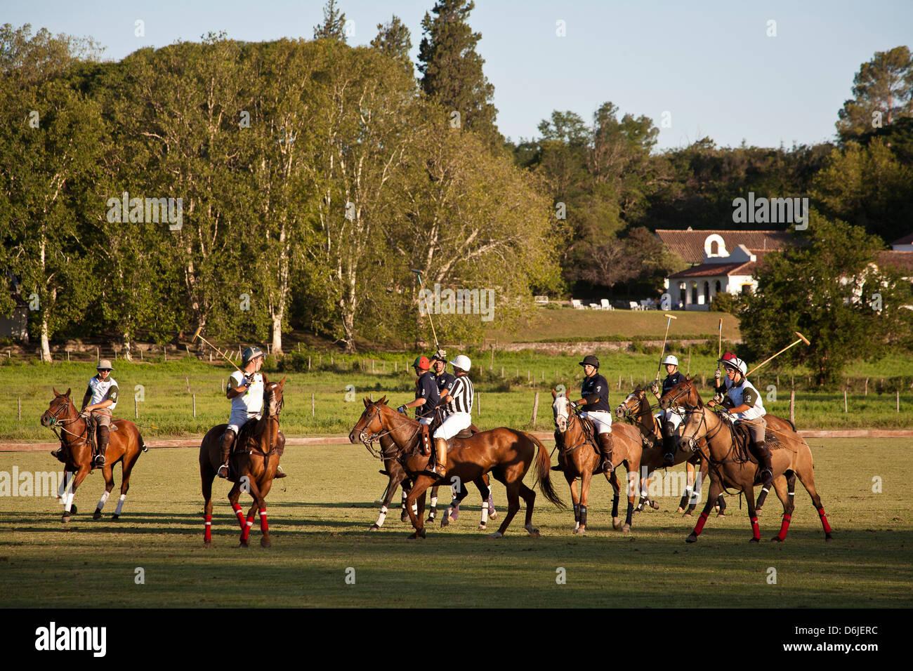 Polo game, Cordoba Province, Argentina, South America - Stock Image