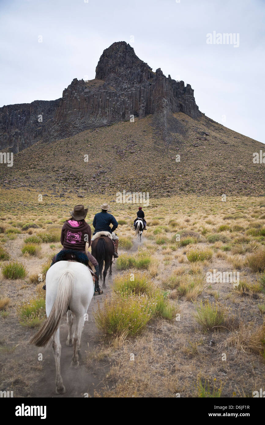 Horseback riding, Patagonia, Argentina, South America - Stock Image