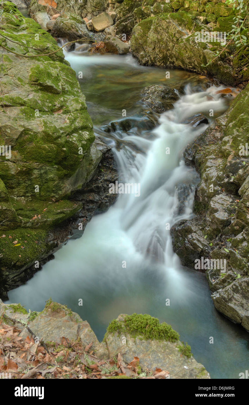 The first dog-leg rapids of the gorge on the River Erme in Dartmoor - Stock Image