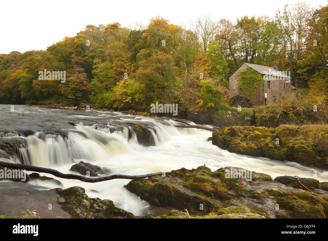 Cenarth Waterfalls, Carmarthenshire, Wales, United Kingdom, Europe - Stock Image