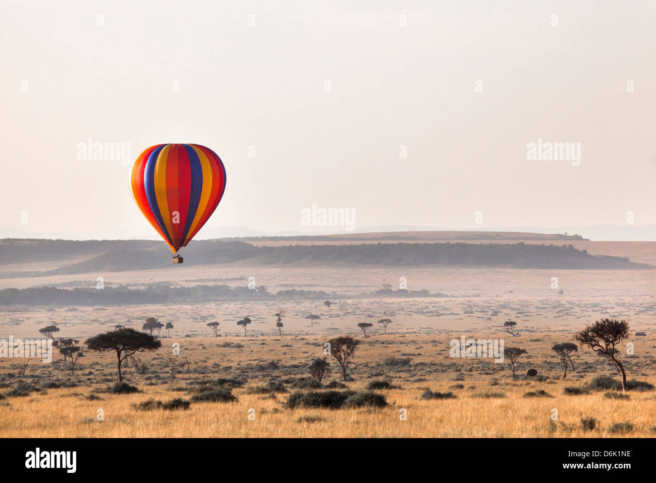 Dawn hot air balloon ride, Masai Mara National Reserve, Kenya, East Africa, Africa - Stock Image