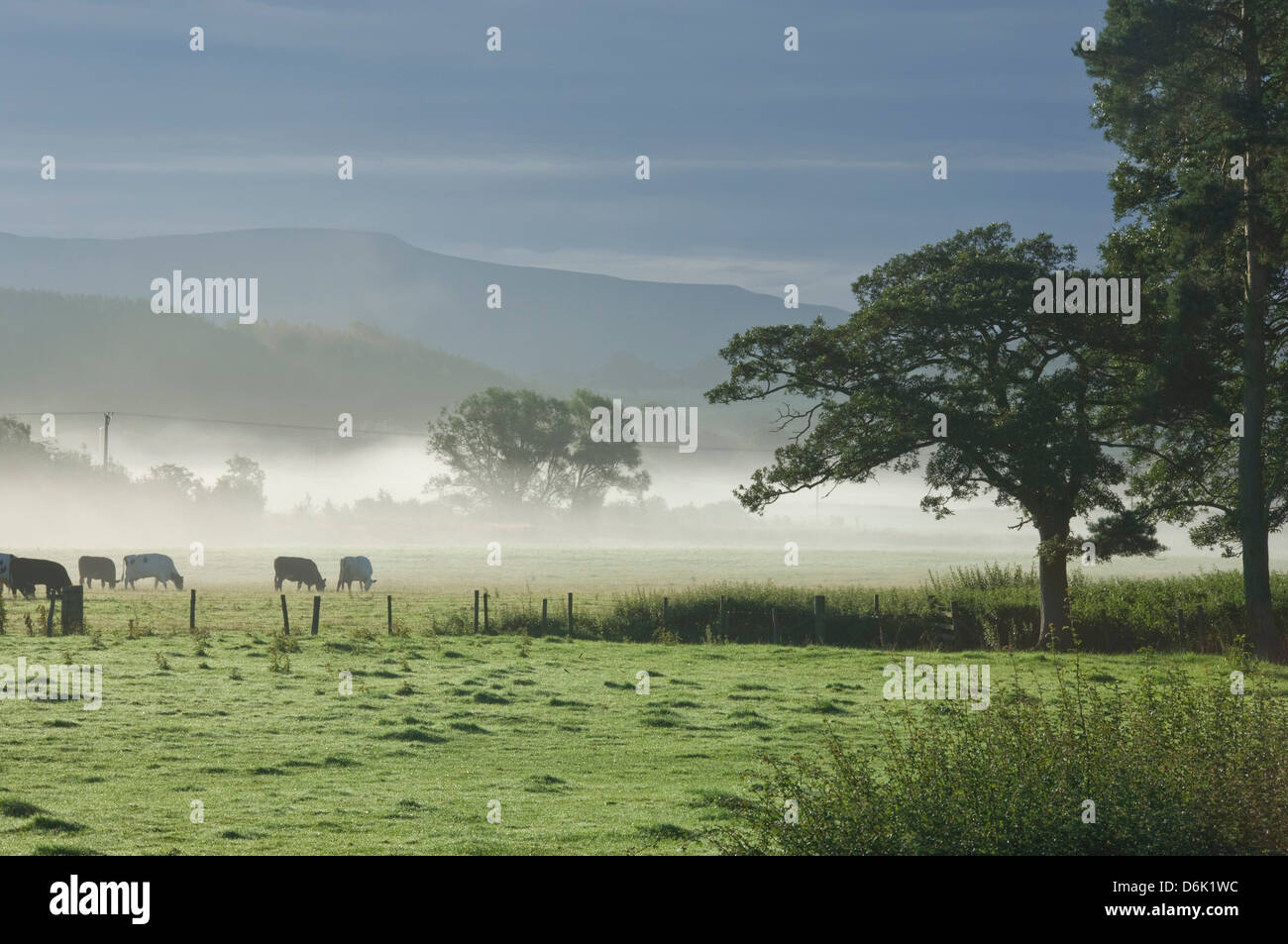 Typical rural view west of the Pennine, with Cross Fell, Eden Valley, Cumbria, England, United Kingdom, Europe - Stock Image