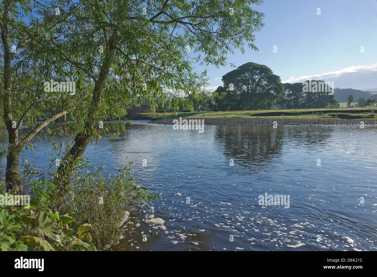 The River Eden near Lazonby, Eden Valley, Cumbria, England, United Kingdom, Europe - Stock Image
