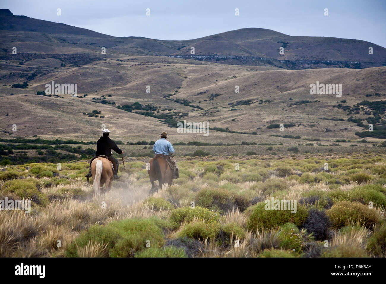 Gauchos riding horses, Patagonia, Argentina, South America - Stock Image