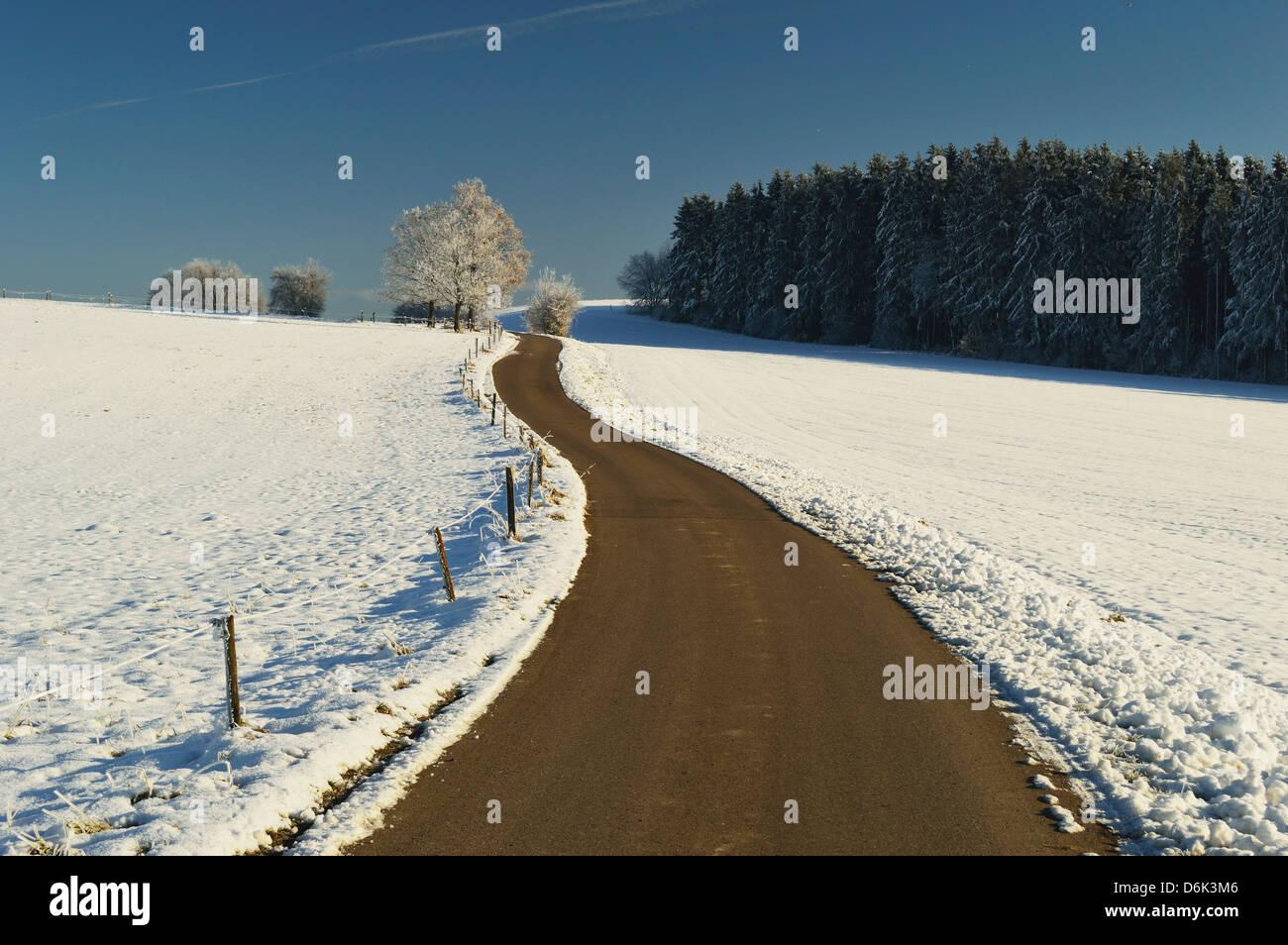 Rural winter scene, near Villingen-Schwenningen, Baden-Wurttemberg, Germany, Europe Stock Photo