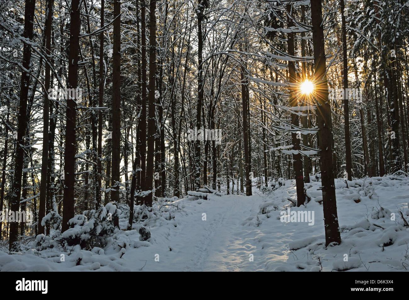 Rural winter scene, near Villingen-Schwenningen, Schwarzwald-Baar, Baden-Wurttemberg, Germany, Europe Stock Photo