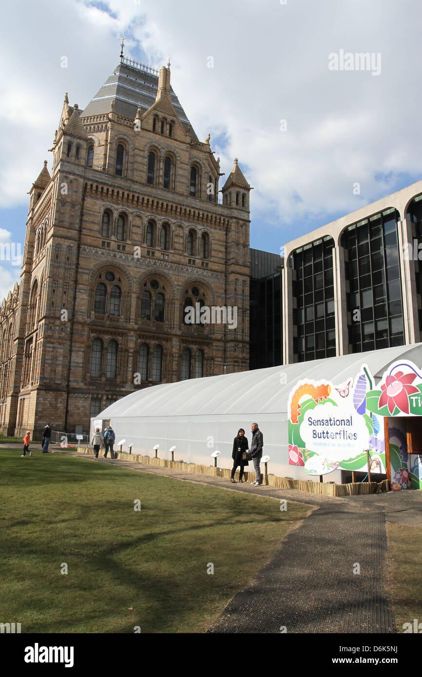 Sensational Butterflies exhibit Natural History Museum London UK April 2013 - Stock Image