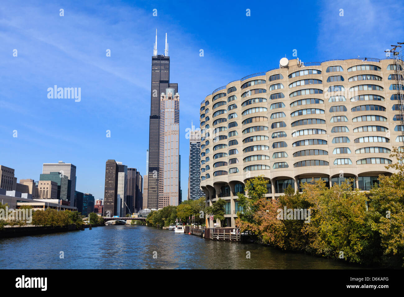 The south branch of the Chicago River, Willis Tower, formerly Sears Tower, in the centre, Chicago, Illinois, USA - Stock Image